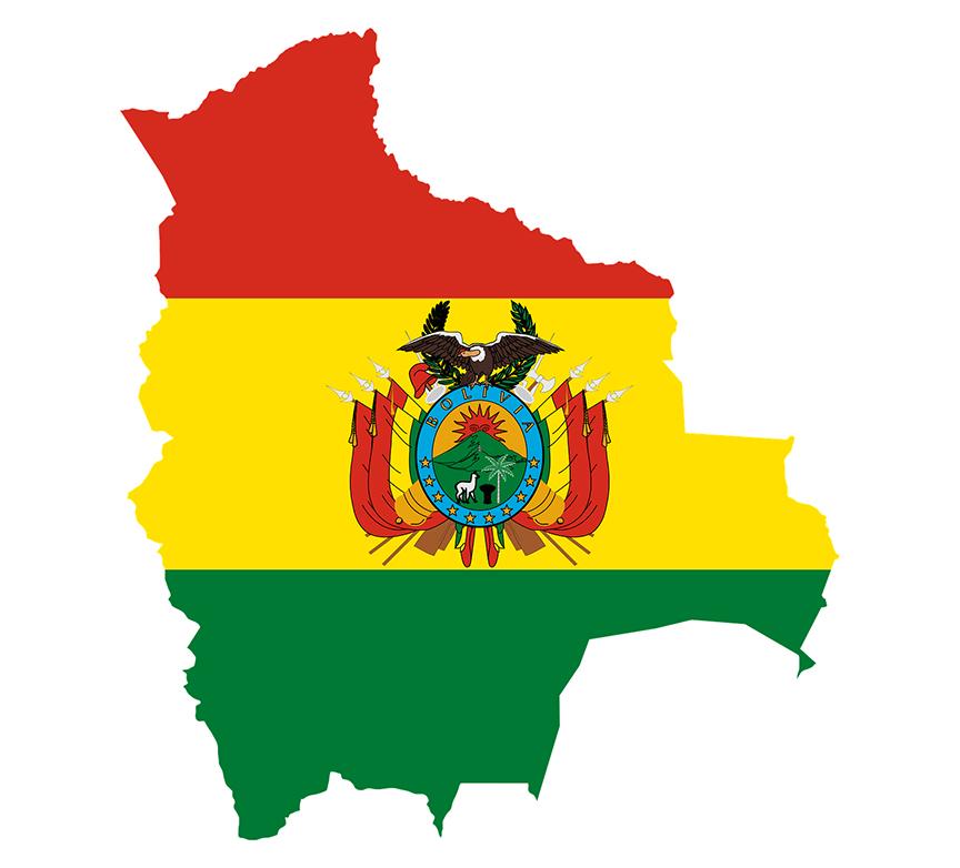 Senadora opositora, muy lejana en la línea sucesoria, asume la presidencia de Bolivia tras la salida de Evo Morales