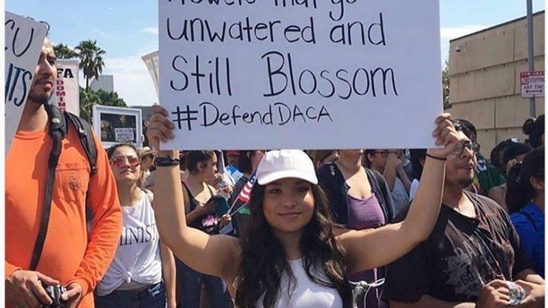 Algunas cosas que sí se saben sobre DACA, mientras se espera la decisión de  la Suprema Corte
