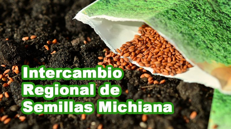 Intercambio Regional de Semillas Michiana