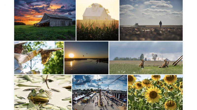 Ganadores del concurso de fotografía galardonados en la Casa del Estado