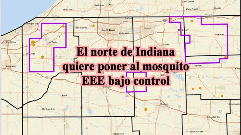 El norte de Indiana quiere poner al mosquito EEE bajo control