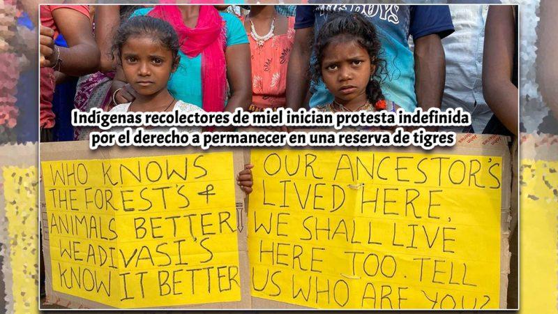 Indígenas recolectores de miel inician protesta indefinida por el derecho a permanecer en una reserva de tigres