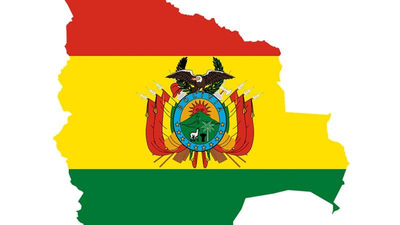 La OEA audita las elecciones en Bolivia mientras en las calles crece la violencia entre oficialistas y opositores