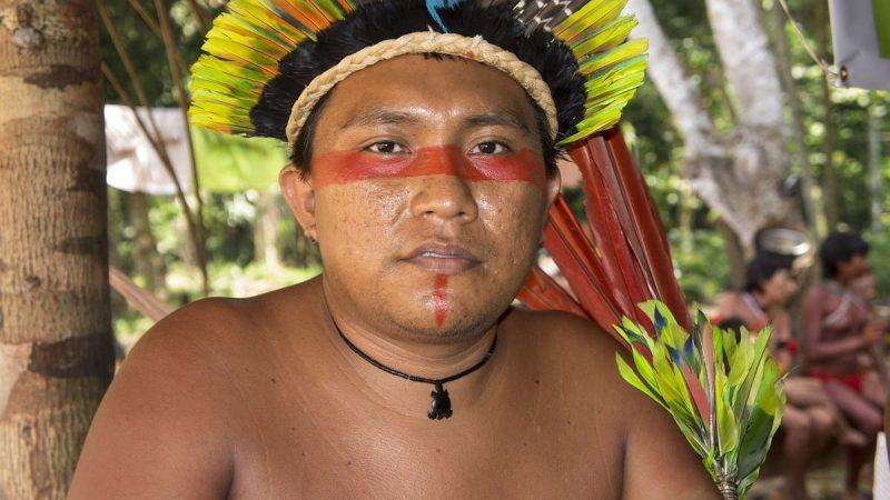 Los yanomamis lanzan una campaña internacional contra la invasión de mineros de oro y la propagación de COVID-19
