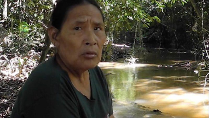 Brasil: la única persona contactada de un pueblo indígena amenazado denuncia un genocidio inminente